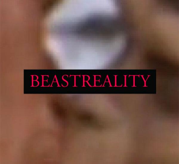 BeastReality